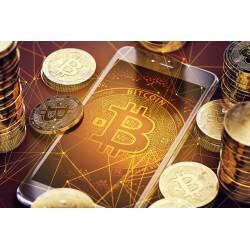 Bitcoin: systeem en...